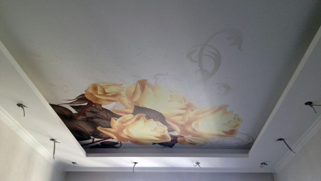 печать фото натяжных для арт на спальни потолках
